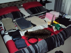 unsere Hauskatze hat keinen Platz mehr...