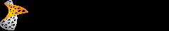 Project Server