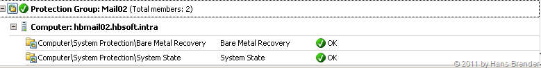 DPM2010 Status OK: Bare Metal Recovery und System State