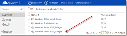 SkyDrive, Ansicht, Browser