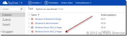 SkyDrive, Ansicht, Browser
