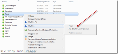 kontextbezogenes Menü für das Teilen im SkyDrive-Explorer