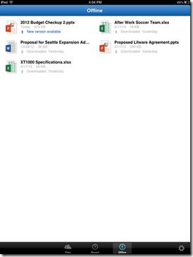 SkyDrive Pro - iPad